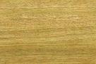 drewno dab vitis