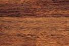 drewno merbau vitis